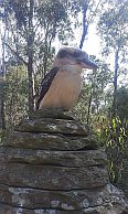 Kookaburra atop the Cairn